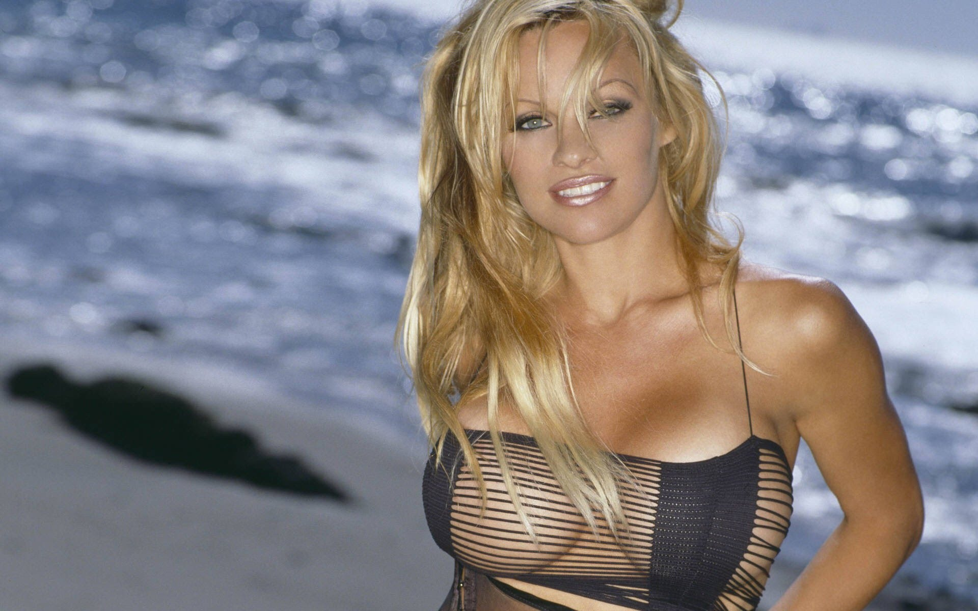 Is a cute Pamela Anderson nudes (85 photo), Tits, Hot, Selfie, bra 2020
